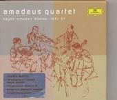 """String quartet """"Serenade"""""""