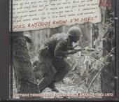 Does anybody know I'm here? : Vietnam through the eyes of black America 1962-1972