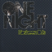 One night with Kosheen DJs