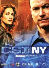 CSI NY. Seizoen 3
