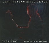 The remedy : Live at the Village Vanguard