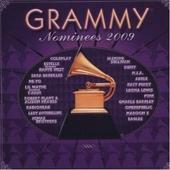 Grammy nominees 2009