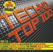 Techno top 100. vol.12