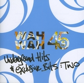 Underground hits and exclusive bits. vol.2