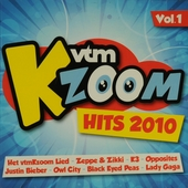 VtmKzoom hits 2010. Vol. 1