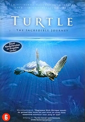 Turtle : the incredible journey
