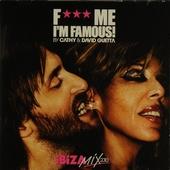 F*** me I'm famous! : Ibiza mix 2010