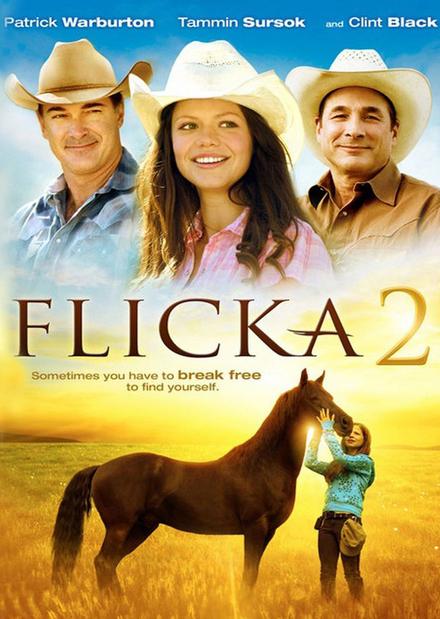 Flicka 2 : friends forever