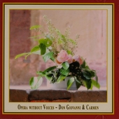 Opera without voices : Don Giovanni & Carmen