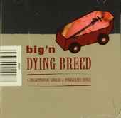 Big'n : A collection of singles & unreleased songs