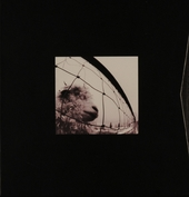 Pearl Jam 1993-1995 : deluxe edition