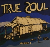 True soul : deep sounds from the left of Stax. Vol. 2