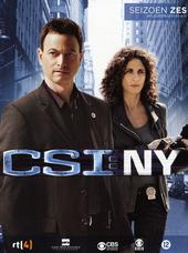 CSI NY. Seizoen 6, Afl. 6.1-6.11