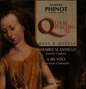 Quam pulchra es : Mass & motets