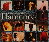 Beginner's guide to flamenco