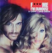 F... me I'm famous! : Ibiza mix 2012