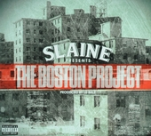 The Boston project