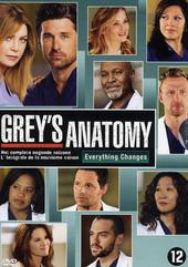 Grey's anatomy. Het complete negende seizoen