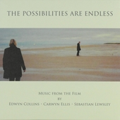The possibilities are endless : music from the film