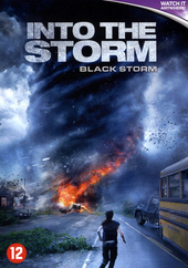 Into the storm