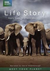 Life story : many lives, one epic journey