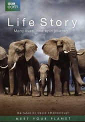 Life story : many lives, one epic journey