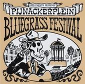Pijnackerplein Bluegrass Festival