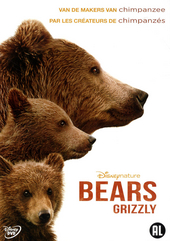 Bears : grizzly