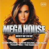 Mega house : Best of 2015