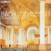 Lutheran masses. II