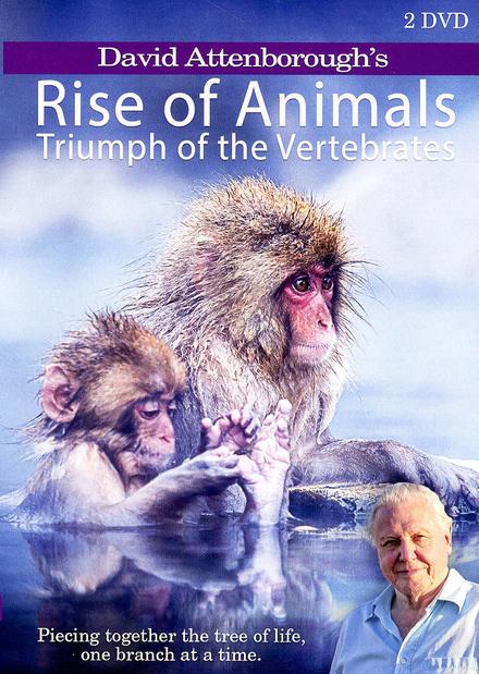 David Attenborough's Rise of animals : triumph of the vertebrates