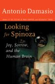 Looking for Spinoza : joy, sorrow and the feeling brain
