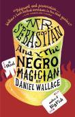 Mr. Sebastian and the negro magician : a novel