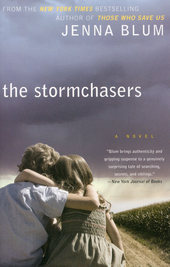 The stormchasers : a novel