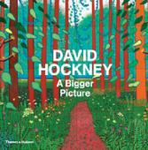David Hockney : a bigger picture