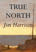True north : a novel