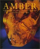 Amber : window to the past