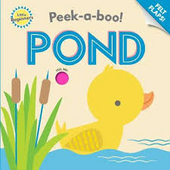 Pond : peek-a-boo!