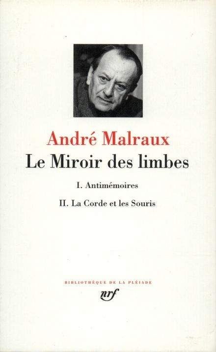 Le miroir des limbes
