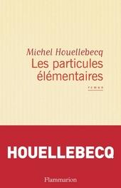 Les particules élémentaires : roman
