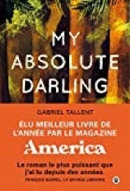 My absolute darling : roman