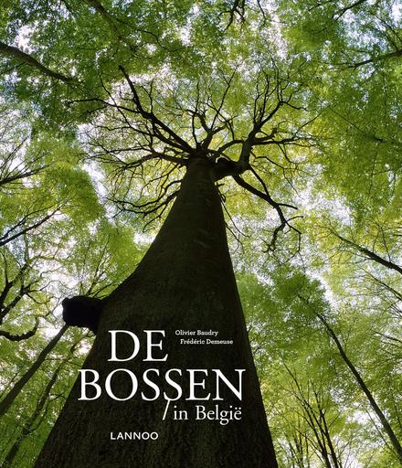 De bossen in België