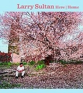 Larry Sultan : here and home