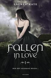 Fallen in love : hoe het allemaal begon ...