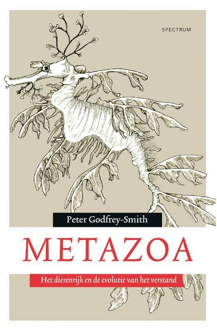Metazoa : het dierenrijk en de evolutie van het verstand