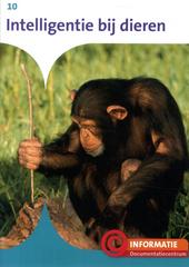 Intelligentie bij dieren