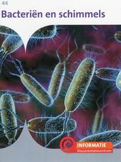 Bacteriën en schimmels