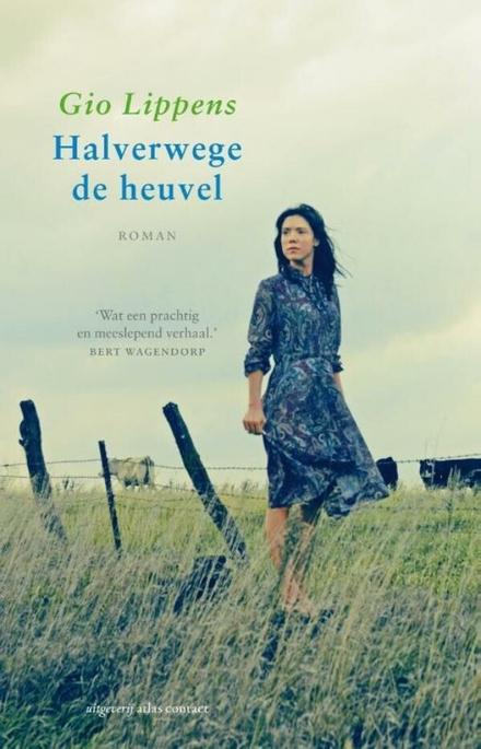 Halverwege de heuvel : roman