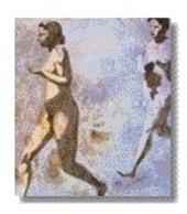 Jan Vanriet : schilderijen 1984-1996