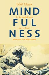 Mindfulness : in de maalstroom van je leven
